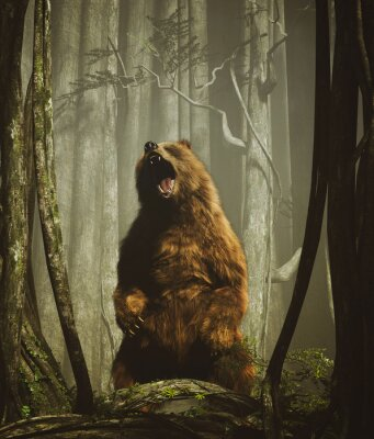 Plakát The forest's tales,Brown grizzly bear in magical forest,3d illustration