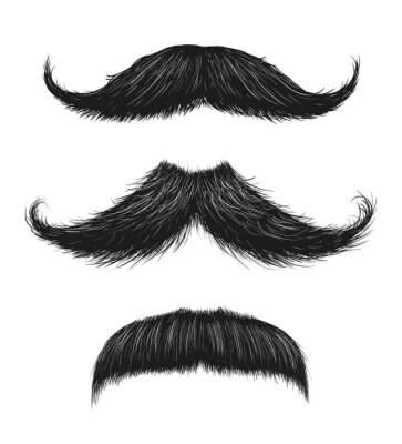 Plakát Three Mustache Set