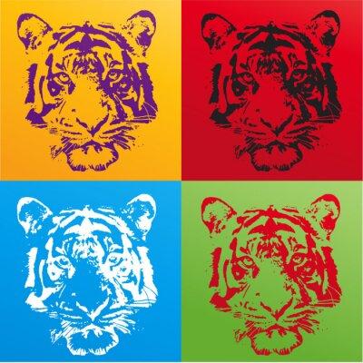 Plakát tigre
