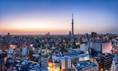 Plakát Tokio Skyline mit Skytree