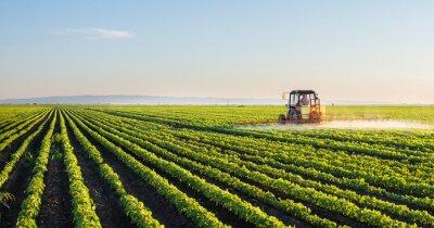 Plakát Traktor stříkání sóji pole