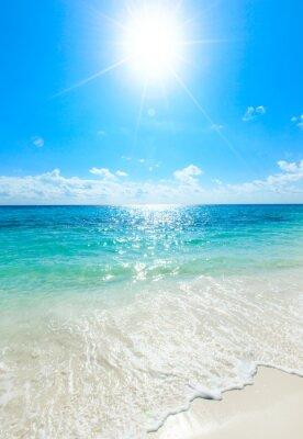 Plakát tropické moře