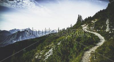 Plakát Turistická stezka přes zalesněné alpské vrcholy v letním slunci s výhledem na vzdálené vrcholky a rozsahy v malebné rakouské krajině