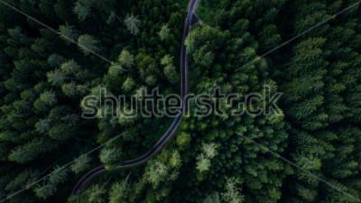 Plakát Úzký ulici mezi lesy, pohled drone