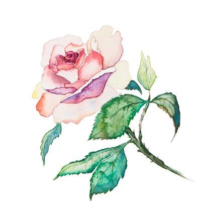 Plakát V jarní květiny Akvarely izolovaných na bílém pozadí