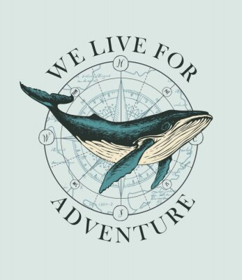Plakát Vector banner with big hand-drawn whale on the background of wind rose and old map in retro style. Illustration on the theme of travel, adventure and discovery with words We live for adventure