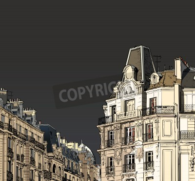 Plakát Vector illustration of facades in Paris in a stormy weather