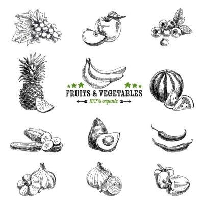 Plakát Vector sada ovoce a zeleniny.
