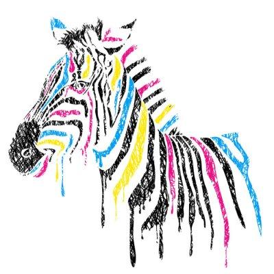 Plakát Vektor zebra s barevnými pruhy, skica styl