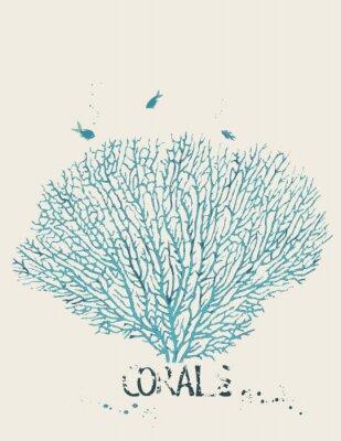 Plakát Vektorové ilustrace korálu ventilátoru