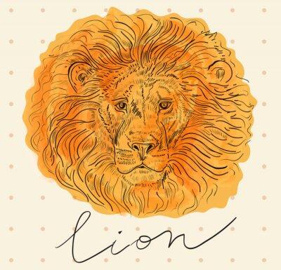 Plakát Vektorové ilustrace s lví hlavou