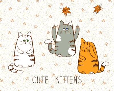 Plakát Vektorové ilustrace ze tří roztomilých doodle koťata.