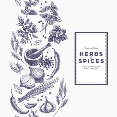Plakát Vektorové pozadí s rukou vypracován bylin a koření.