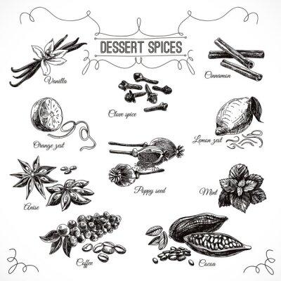 Plakát Vektorové ručně kreslenými set s dezertem kořením.