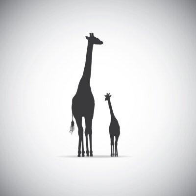 Plakát Vektorové silueta matky žirafa s dítětem