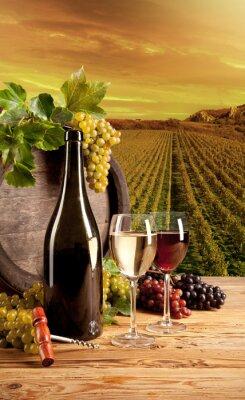 Plakát Víno ve vinici