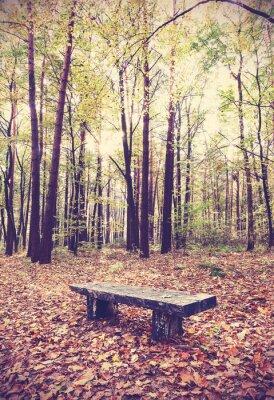 Plakát Vintage filtrovaný obraz na lavičce v lese.