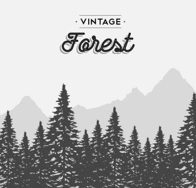 Plakát Vintage les štítek na zimní strom krajiny