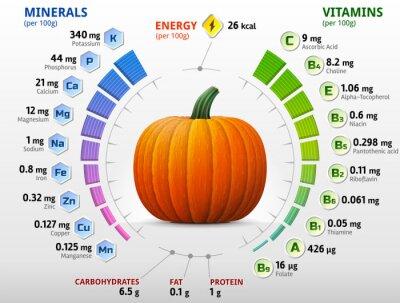 Plakát Vitamíny a minerály z dýně. Zimní squash živiny