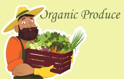 Plakát Vousatý farmář nebo zahradník v klobouku drží dřevěné krabice naplněné čerstvé zeleniny a ovoce, zkopírujte prostor na pravé straně, EPS 8 vektorové ilustrace, žádná fólie