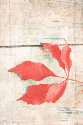Plakát Výstřední pozadí s červeným listem