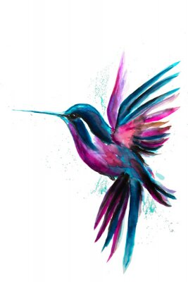 Plakát Watercolor Hummingbird flying and isolated on white background. Rainbow bird. Tropical colibri watercolor illustration.