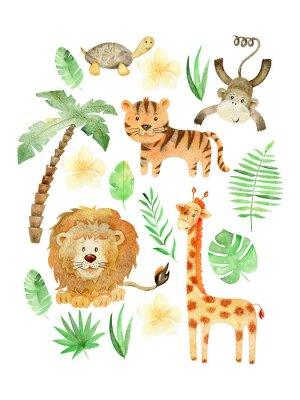 Plakát Watercolor safari arrangements.