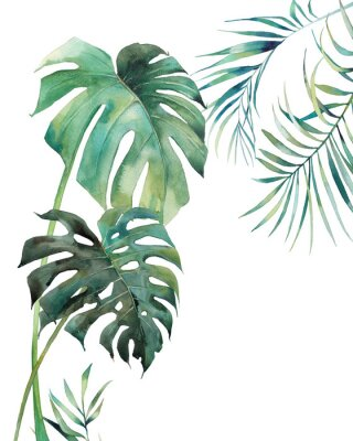 Plakát Watercolor tropical leaves poster. Hand painted exotic monstera and palm green branches isolated on white background. Summer plants illustration