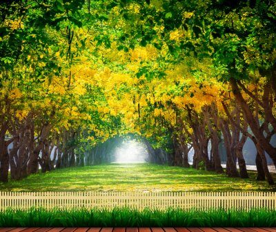 Plakát wood terrace with fresh and green beautiful of summer blooming y