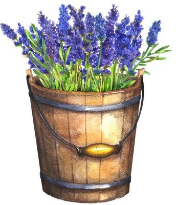 Plakát Wooden bucket with lavender