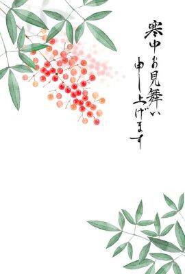 Plakát 南天の実 寒中見舞い 背景 水彩 イラスト