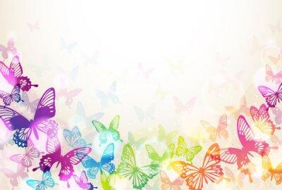 Plakát 蝶 々