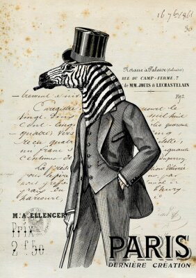 Plakát Zebra jeden