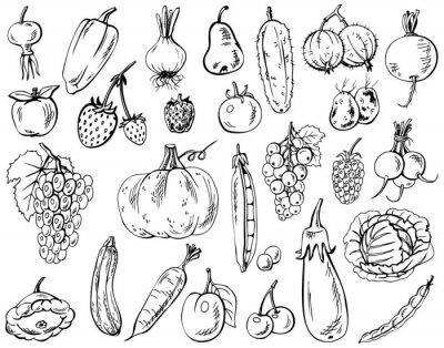 Plakát zelenina, ovoce a bobule