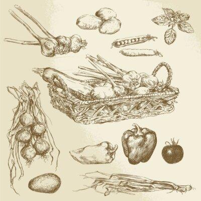 Plakát zelenina - ručně malovaná sbírka