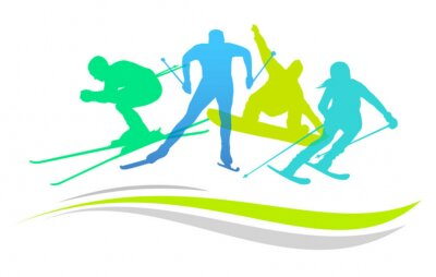 Plakát Zimní sporty - 2