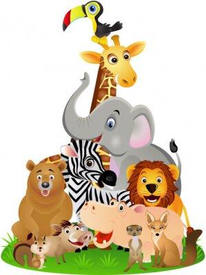 Plakát zvíře karikatura